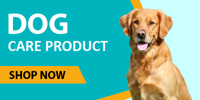 Buy Pet Products, Food and Accessories from pgpet petindiaonline