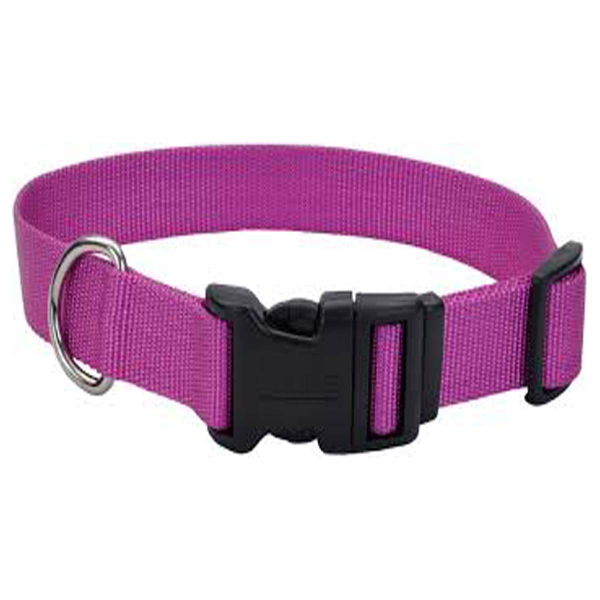 Buy Dog Nylon Collar 1.25